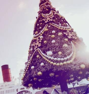 年末ですね!(2017/11/23 15:53)佐藤 純のブログ画像