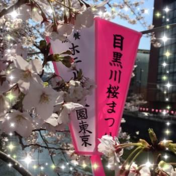 桜🌸(2017/04/04 12:00)新垣 流羽のブログ画像
