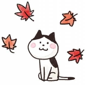 ありがとうございました(2017/11/02 12:51)木村 綾乃のブログ画像