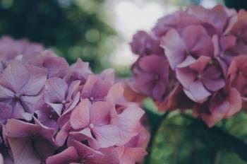 ありがとうございました(2021/05/27 21:00)木村 綾乃のブログ画像