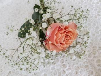 ありがとうございました(2021/09/30 01:54)木村 綾乃のブログ画像