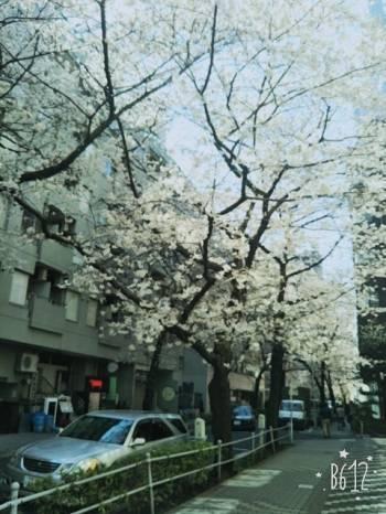 ありがとうございました^_^(2017/04/06 12:08)浅田 結衣香のブログ画像