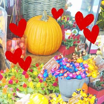 ありがとうございました♡(2017/10/12 08:51)春菜 りおんのブログ画像