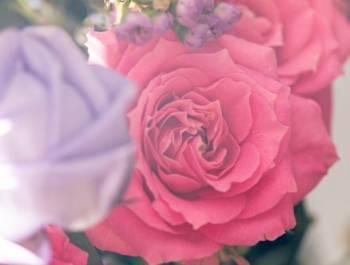 こんにちは✨(2019/04/13 12:41)上原 夏季のブログ画像