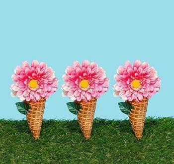 おはようございます☀(2019/05/11 12:31)上原 夏季のブログ画像