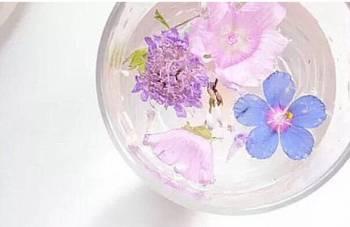 こんにちは😃(2019/07/26 13:16)上原 夏季のブログ画像