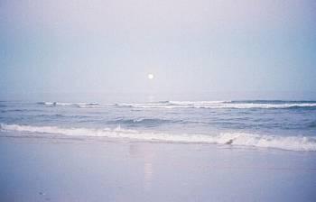 海✨(2019/08/23 13:23)上原 夏季のブログ画像