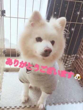 先日は…(2018/03/07 13:12)七草 かのんのブログ画像