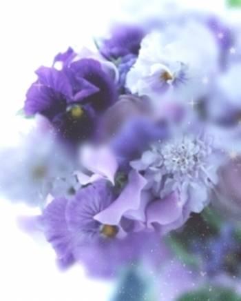 🌸3/16🌸(2019/03/16 11:03)片瀬 美沙のブログ画像