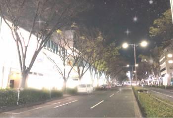🌙4/14🌙(2019/04/14 23:42)片瀬 美沙のブログ画像