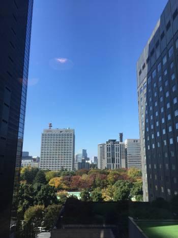 行っちゃいました(^^)@ゆみ(2017/11/13 15:27)大橋 ゆみのブログ画像