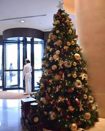 出張@ゆみ(2018/12/21 14:27)大橋 ゆみのブログ画像