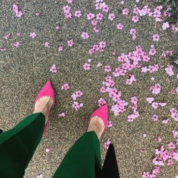 春を感じて@ゆみ(2019/03/25 15:25)大橋 ゆみのブログ画像