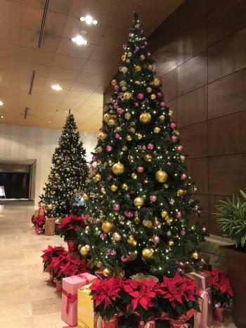 もうすぐ…@ゆみ(2019/12/21 13:31)大橋 ゆみのブログ画像