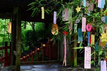 七夕@ゆみ(2021/07/07 11:42)大橋 ゆみのブログ画像